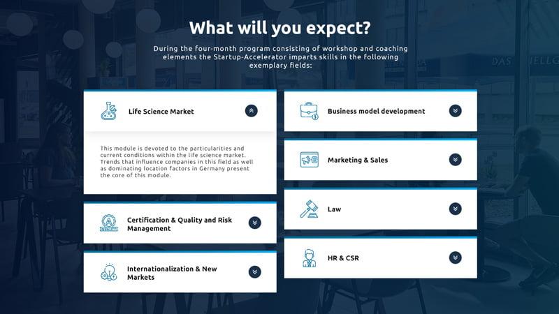 bebilderte Sektion zeigt die einzelnen Coaching-Elemente des Förderprogramms